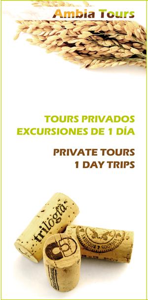 Excursiones-Valencia.jpg